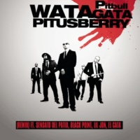Pitbull ft.Lil Jon, Sensato Del Patio, Black Point & El Cata ワタガタ(いとしのベリーにピット★イン)