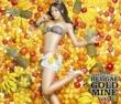 MISON-B Dream Butterfly