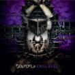 Soulfly Enslaved