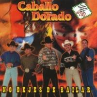 Caballo Dorado Chihuahua
