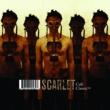 Scarlet Cult Classic