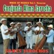 Conjunto Alma Jarocha Sones Jarochos