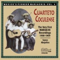 Cuarteto Coculense El Cuervo