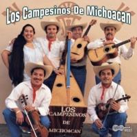 Los Campesinos De Michoacan Aguililla