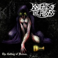 Knights Of The Abyss Swine Of The Holy Order