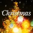 加羽沢美濃 決定盤 クリスマス