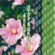 V.A. コロムビア名流民謡集~東京民謡会~(下)