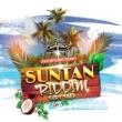 Various Artists Sun Tan Riddim Part Two