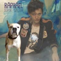 Raphael Collision