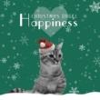 OMGオルゴール MERRY CHRISTMAS MR.LAWRENCE(坂本龍一) 2013 ver.(オルゴール「クリスマス・オルゴール~ハピネス~」)