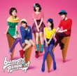 bump.y pinpoint 通常盤