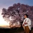 藤原道山 季(TOKI)-春-
