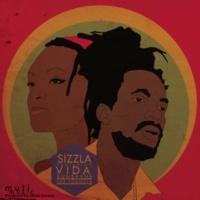 Sizzla The Formula (feat. Vida Sunshyne) [Dizz1 Remix]
