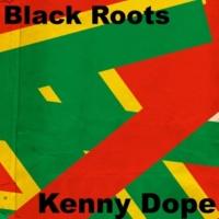 Kenny Dope Jungle Bunny