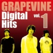 GRAPEVINE Digital Hits vol.1