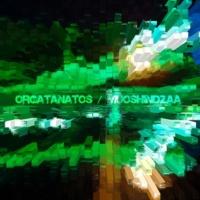 Orgatanatos rnd(1031)Hz