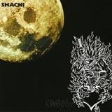 SHACHI RUNNER