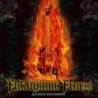 福山芳樹 FUKUYAMA FIRE~A Tribute To Nekki Basara~