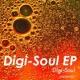 Digi-Soul Wow Disco