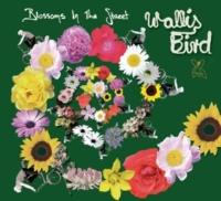 Wallis Bird Blossoms In The Street [Radio Edit]