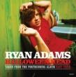 Ryan Adams Halloweenhead