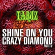 TARUZ SHINE ON YOU CRAZY DIAMOND (PART I-V)