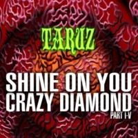 TARUZ SHINE ON YOU CRAZY DIAMOND (PART I-V)