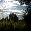 Natural Habitz Let's Go (DJ Kross Remix)