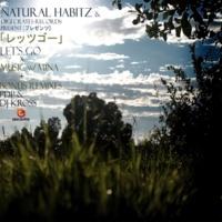 Natural Habitz Let's Go (PDP Piano Mix)