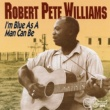 Robert Pete Williams Two Wings