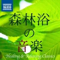 シアトル交響楽団/ジェラード・シュワルツ(指揮) パッヘルベル: カノン
