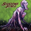 Shadows Fall Another Hero Lost