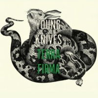The Young Knives Terra Firma