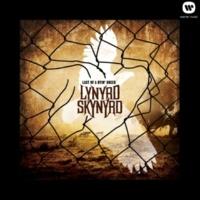 Lynyrd Skynyrd Do It Up Right