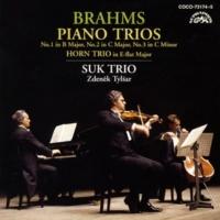 スーク・トリオ ピアノ三重奏曲 第1番 ロ長調 作品8 II- Scherzo. Allegro molto