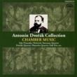 ヨゼフ・スーク/アルフレート・ホレチェク ヴァイオリンとピアノのためのソナタ ヘ長調 作品57 B106 I- Allegro ma non troppo