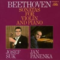 ヨゼフ・スーク/ヤン・パネンカ ヴァイオリン・ソナタ 第6番 イ長調 作品30の1 I- Allegro