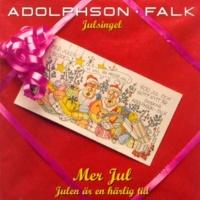 Adolphson & Falk Mer jul
