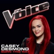 Casey Desmond Born This Way [The Voice Performance]