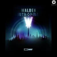 Walden Intropial (Original Mix)