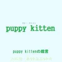 puppy kitten ENIKKI