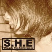 Struggle-Head,Emergence echo chamber