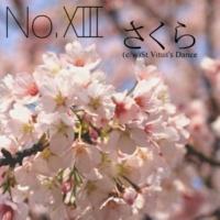 No.XIII さくら