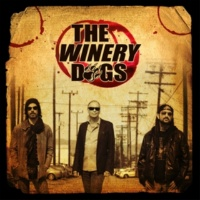 THE WINERY DOGS Not Hopeless