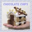 チョコレート・チップス 宇宙☆ロケット