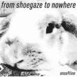 音速ライン from shoegaze to nowhere