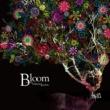 少年記 bloom beautifully
