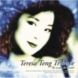 Teresa Teng Teresa Teng Tribute ~Re-make,Re-model~