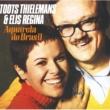 Toots Thielemans Aquarela Do Brasil