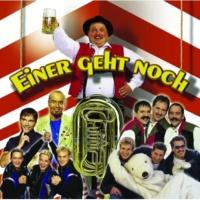 Wilhelm Toll und die Eidgenossen Dä Stirnimaa [Radio Mix - Deutsch]